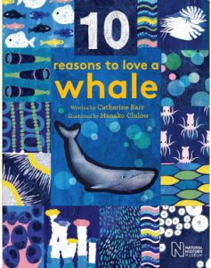 10 Reasons to love a whale cover image